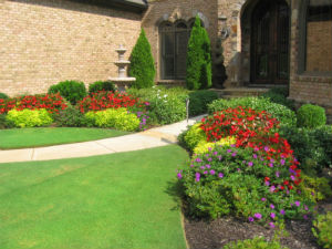 Best Of The Web 3 Fantastic Lawn Care Resources All