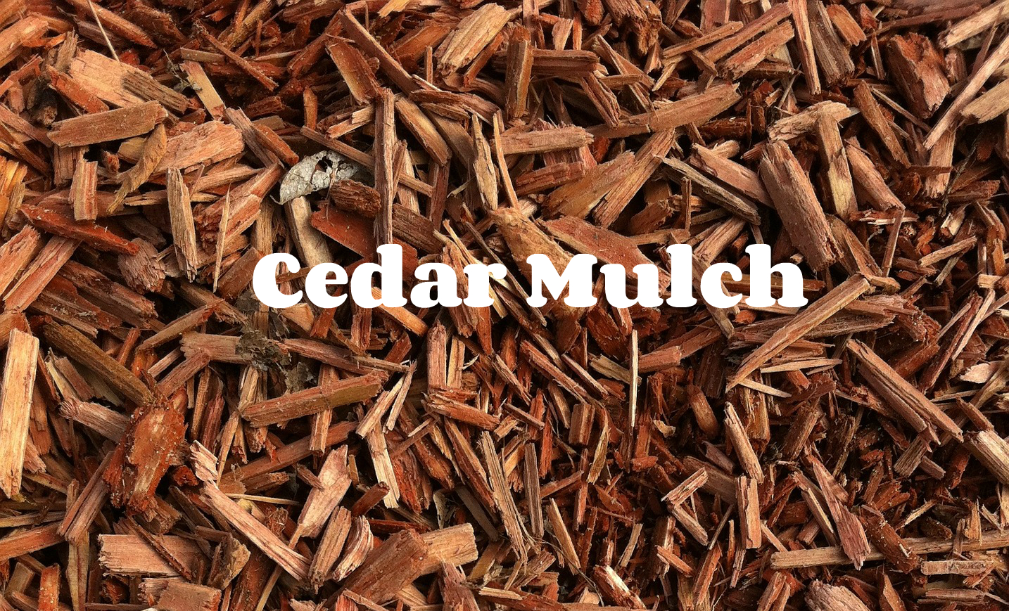 Cedar Wood Chips ~ Using mulch to deter pests all turf lawn care atlanta
